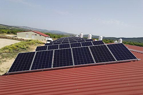 ejemplo de autoconsumo con energía solar en una granja